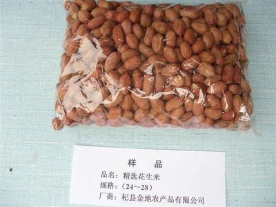 精选花生米样品规格(24-28)