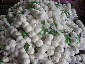 网装精品蒜
